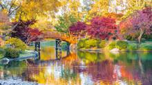 View Of Beautiful Japanese Gar...