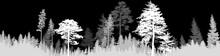 Dark Grey Fir Forest Stripe Is...
