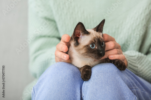 Obraz Cute Thai cat with owner at home - fototapety do salonu