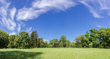 Panorama Of Glade In The Park ...