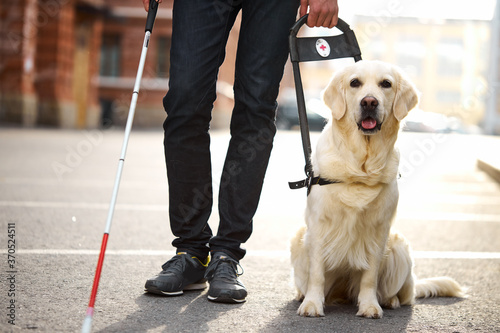 Photo unrecognizable blind man with helpful dog guide, man walk holding cane for disab