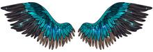 Beautiful Magic Shiny Tuquoise Brown Magic Angel Wings, Vector