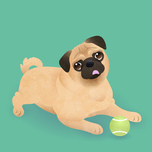 Cute Pug Dog Looking And Begging For Love On Green Background. Vector Illustration.