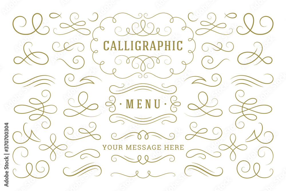Fototapeta Calligraphic design elements vintage ornaments swirls and scrolls ornate decorations vector design elements