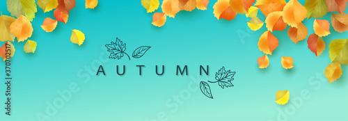 Fototapeta Autumn Leaves Banner obraz