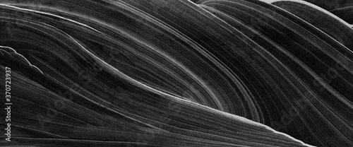 wzor-abstrakcyjny-w-czerni