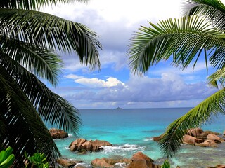 Fototapeta Drzewa Seychelles, La Digue island, Gaulettes beach