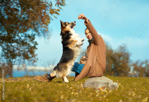 Tela Girl with dog on grass at autumn park, training Welsh Corgi dog outdoors, pet standing on hind legs ad asking food