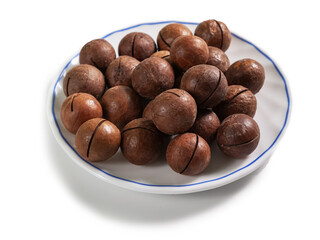 macadamia nut in a shell on a white saucer with a blue border, isolated on a white background