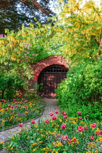 Fototapety, obrazy: Blooming tulips and viola in the park against the background of the gate in the arch