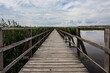 Long Empty Wooden Boardwalk By Reeds Over Federsee