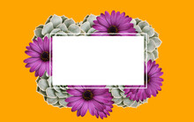 Orange Background With Succulents And Purple Asters With White Space For Inscription Or Logo