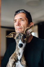 Mature Male Owner And Cute Whippet Dog Looking Away While Resting At Home Together