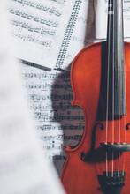 Top View Of Shiny Violin Arran...