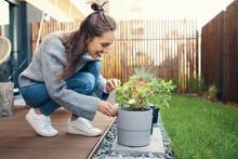 Smiling Young Woman Looking At Potted Plant In Garden