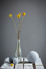 Wool Spheres And BottleÔøΩwith Blooming Billy Buttons