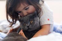 Little Girl Cuddling Grey Cat ...