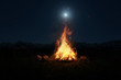 canvas print picture 3d rendering of big bonfire with sparks and particles in front of forest and moonlight