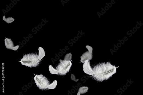 Light fluffy a white feathers floating in the dark Fototapet