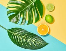 Tropical Palm Leaf And Fresh F...