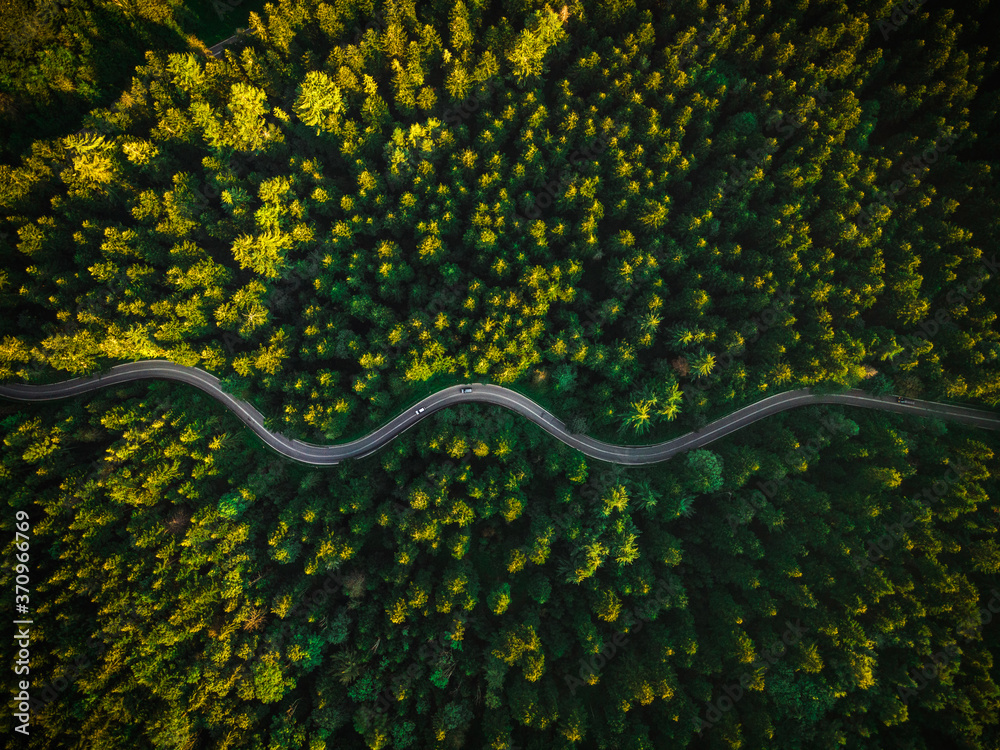 Winding Curvy Road Trough Forest. Aerial Drone Top Down View. Wilderness Landscape