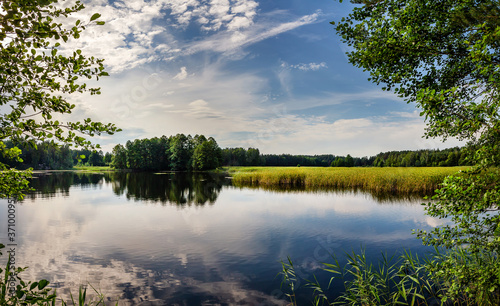 Fototapeta Beautiful lake in the woods with pine trees on the shore for summer vacation. Travel to Ukraine. obraz na płótnie