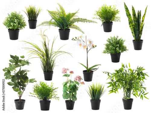 Fotografiet Set of artificial plants in flower pots isolated on white