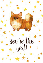 Card With Golden Stars And Watercolor Pomeranian  Spitz Dog In Red Color With Light Spots , Isolated On White Background.