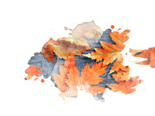 Watercolor Drawing Of Red Autumn Leaves On An Old Wooden Board Background