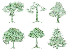 Tree Isolated Silhouettes With...