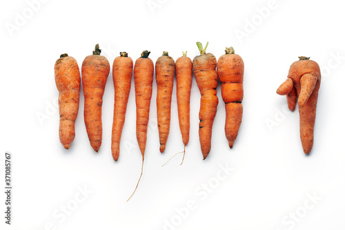 Fotografering Top view of row of fresh raw carrots isolated on white background