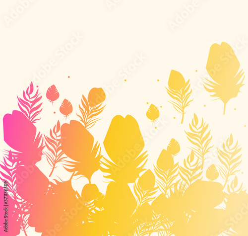 Obraz na plátně Feathers Silhouettes