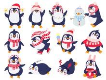 Penguin. Hand Drawn Cute Pengu...