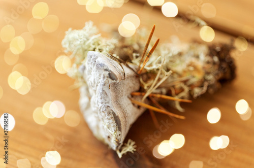 nature, inedible mushrooms and environment concept - hydnellum fungus on wooden background