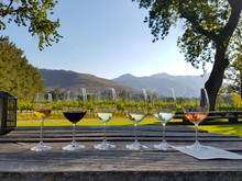 Wine Tasting In Stellenbosch, South Africa. From The Front: Blanc De Noir, Chardonnay, Sauvignon Blanc, Merlot, Cabernet Sauvignon.