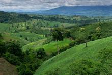 Landscape Nature Mountain View...