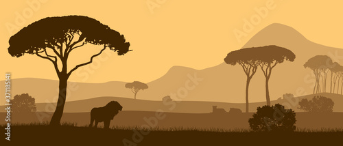Obraz na plátně Beautiful vector landscape of African savannah with animals during sunset
