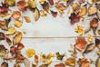Autumn Leaves On White Wooden Planks
