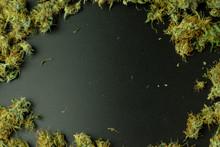 Cannabis Flower Buds Flat Lay ...
