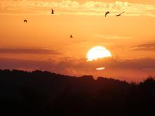 Coucher De Soleil Sur Les Mara...