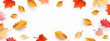 Autumn seasonal background with border frame with falling autumn golden, red and orange colored leaves on white background with place for text. Hello autumn vector illustration