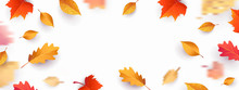 Autumn Seasonal Background Wit...