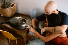 Couple And Their Cat