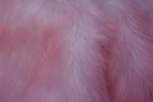 Pink Fuzz