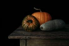 Pumpkin Squash Family