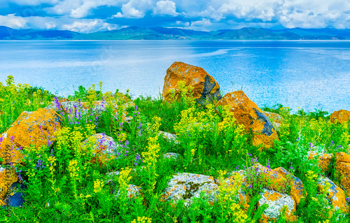 Photo The boulders among the wildflowers, Sevan Lake, Armenia