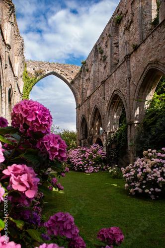 L'abbaye et les fleurs Canvas Print