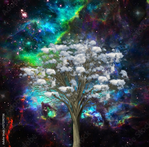 Fotografija Sky tree. Clouds on a branches. Modern surreal art. 3D rendering