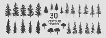 Vector Trees - Collection Of 30 Detailed And Different Tree Silhouette Illustrations. Eps Set.