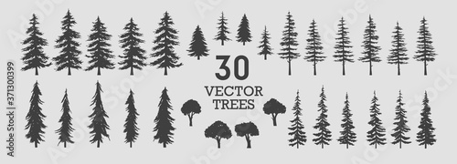 Obraz Vector trees - collection of 30 detailed and different tree silhouette illustrations. Eps set.  - fototapety do salonu